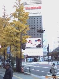紅葉のイチョウとビックカメラ